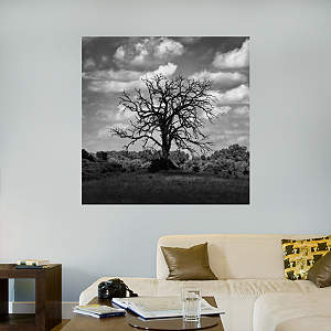 Dead Cottonwood Tree in a Cloud Shadow by Keith Dotson Fathead Wall Decal